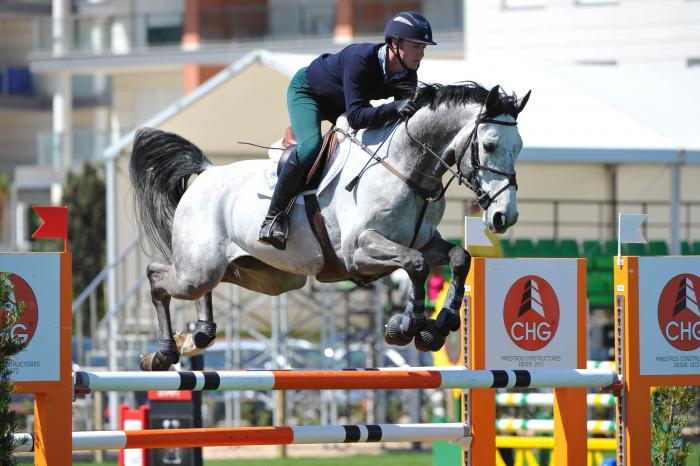 Arkol - Showjumping Stallion - Harthill Stud