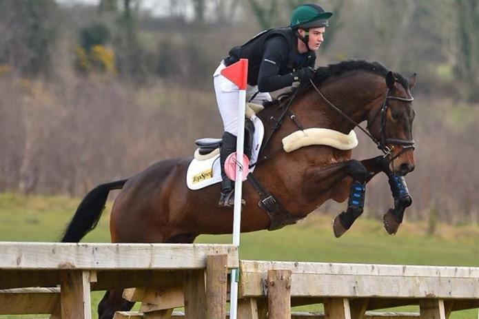 Potential top class hunter and Eventer