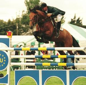 Ramiro B Event Horse Sire & Show Jumping Sire