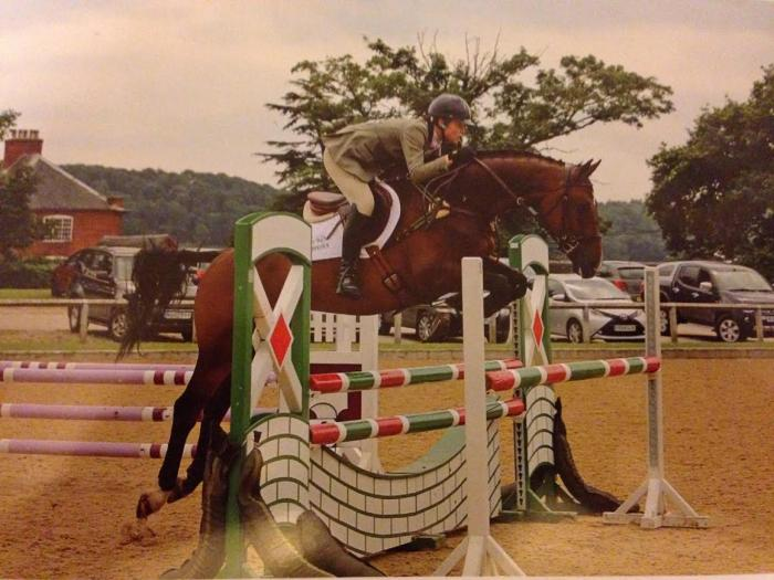 16.2 6yo KWPN event horse by Up to Date produced by Tiny Clapham
